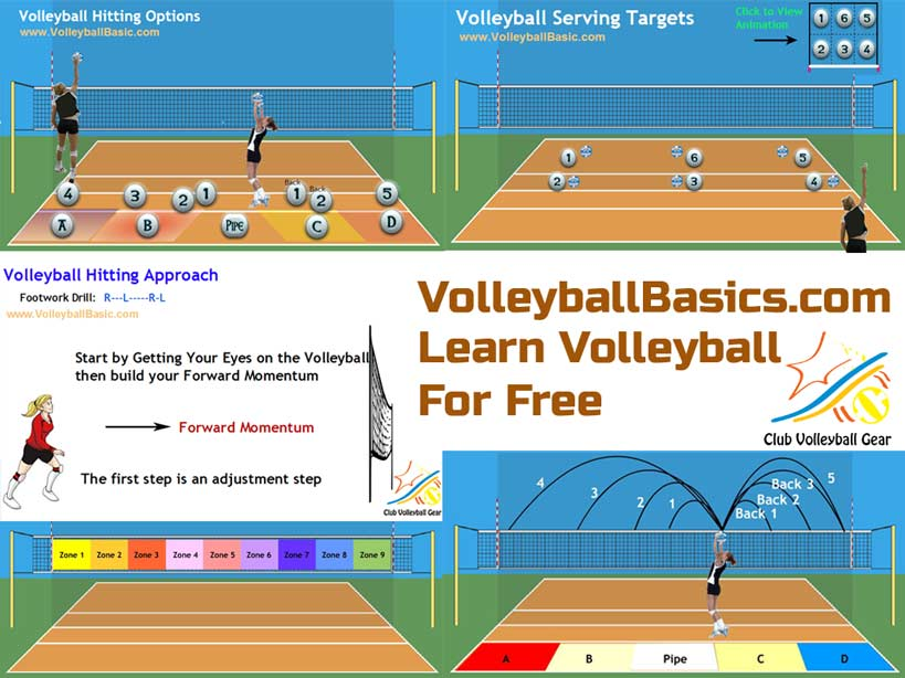 Volleyball Basics.